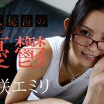 丘咲エミリ 美人秘書の憂鬱